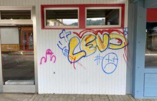 Sprayer verunstalten in Dintikon mehrere Fassaden