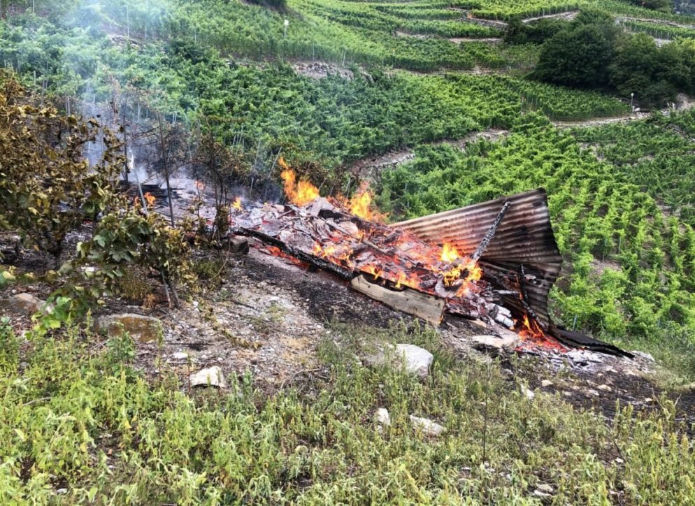 Weinberg in Chamoson VS in Brand geraten
