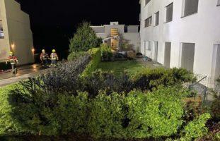 Heckenbrand durch Feuerwerksrakete in Menzingen