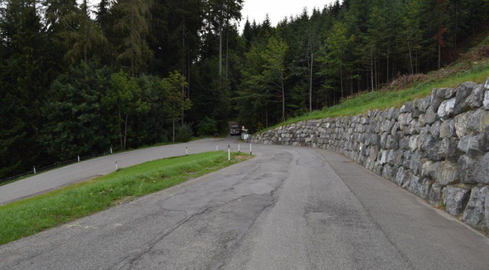 Oberegg AI: Bei Probefahrt ungebremst in Wald gekracht