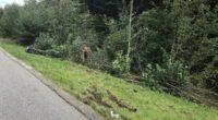 Tödlicher Verkehrsunfall in Mühlrüti SG