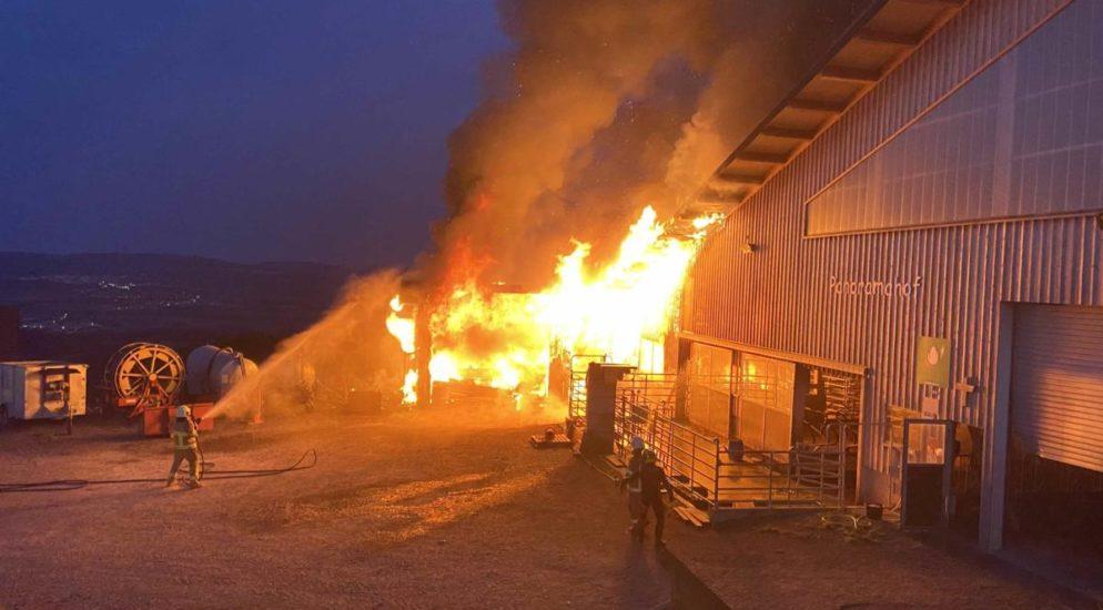 Beinwil AG - 16-Jähriger bei Brand verletzt