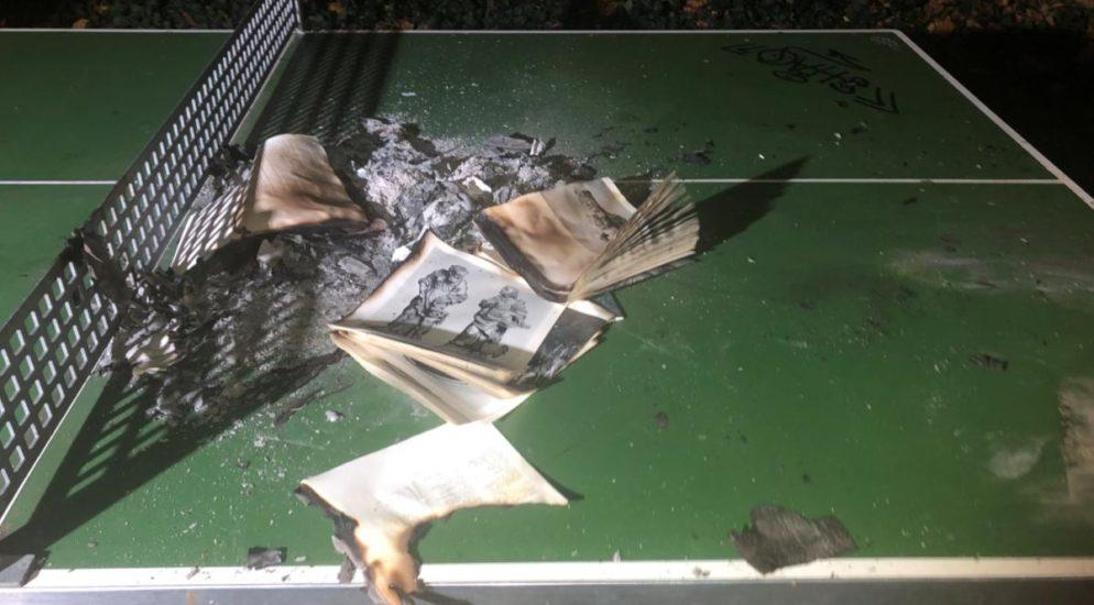 Schaffhausen: Brandstiftung in Parkanlage