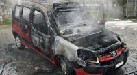 Geuensee LU - Abgestelltes Fahrzeug in Flammen aufgegangen