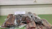 Hunderte Kilogramm Fleisch in die Schweiz geschmuggelt