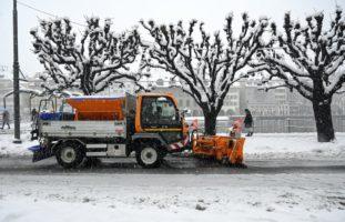 Luzern warnt vor Aufenthalt im Wald aufgrund umstürzender Bäume