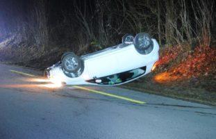 Wildunfall in Merishausen: Autolenker landet auf Dach