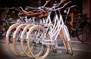 Mehr als ein Dutzend Zweiräder gestohlen