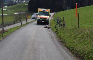 Katze läuft vors Rad - Velofahrer nach Sturz in Waldstatt AR verletzt