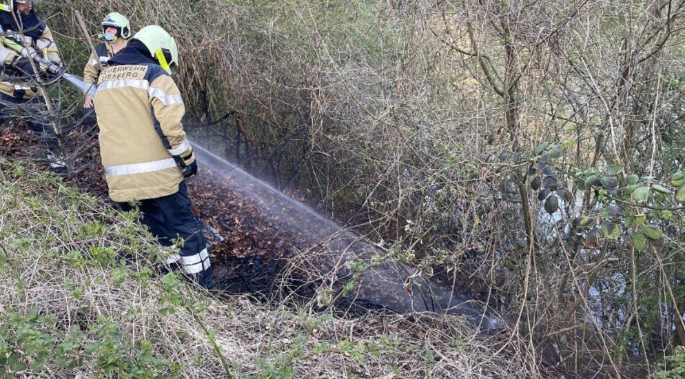 Arlesheim, Liesberg BL: Mehrere Brandausbrüche