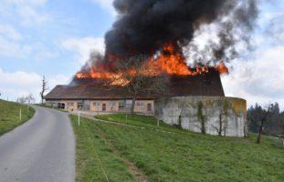 Ruswil LU - Ursache für Scheunenbrand geklärt