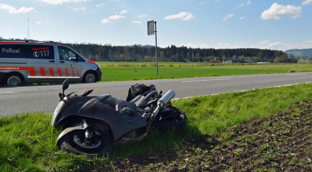 Todes Tier und verletzter Lenker bei Unfall in Neudorf LU
