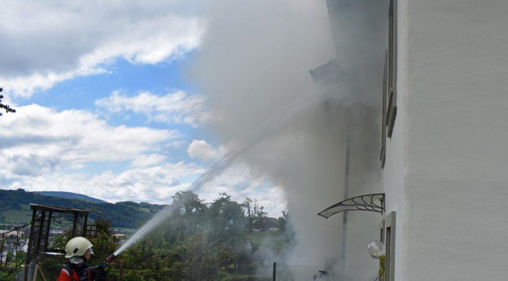 Hitzkirch LU: Katze kommt bei Brand ums Leben