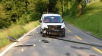 Thayngen SH - Motorradfahrer stirbt auf Unfallstelle