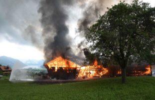 Brand Alpnach Dorf OW: Kälber fallen Feuer zum Opfer