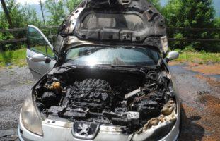 Arth SZ - Feuerwehr rückt zu plötzlichem Fahrzeugbrand aus