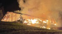 Brand Wolhusen LU - über 100 Tiere verendet